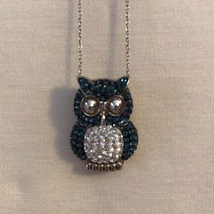 Jewelry - Sterling Silver Teal Owl Necklace - shiny!🦉
